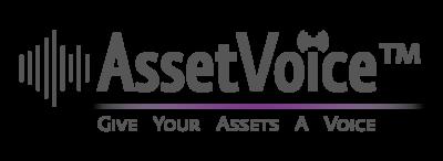 AssetVoice™